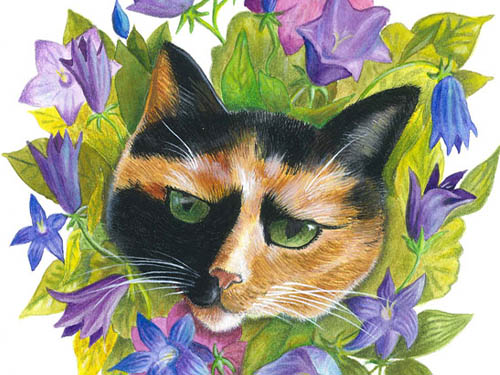 Flower Cat 3