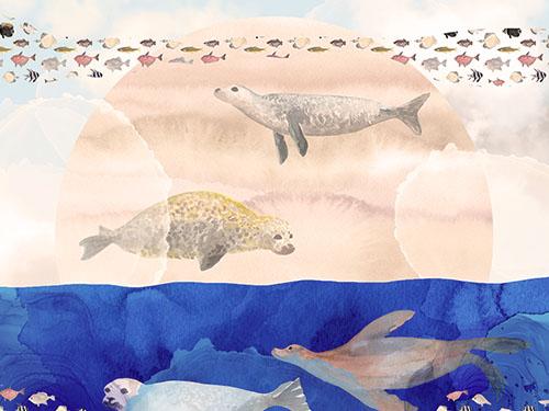 Seals, Sand, Ocean, Sun