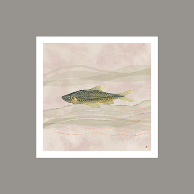 Vintage fish art in earth tones, displayed against a Pewter Cast SW Color.
