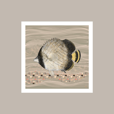Vintage light brown colors fish art, on SW Colonnade Gray wall paint