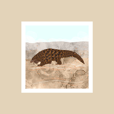 Pangolin art print in warm earth tones and desert-like wall color