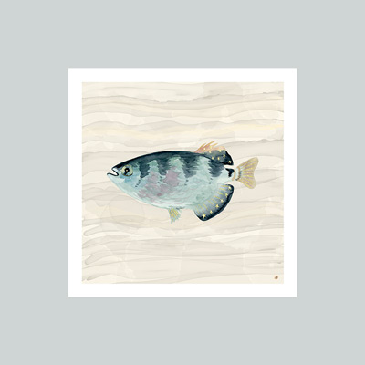 Cool blue and beige fish watercolor art print, paired with the Misty wall color from Sherwin-Williams.
