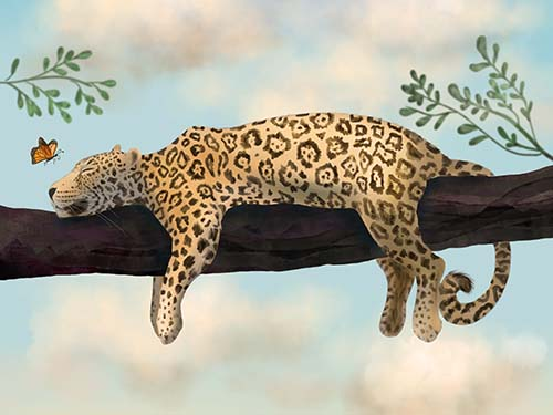 The Lazy Jaguar – Animal Art