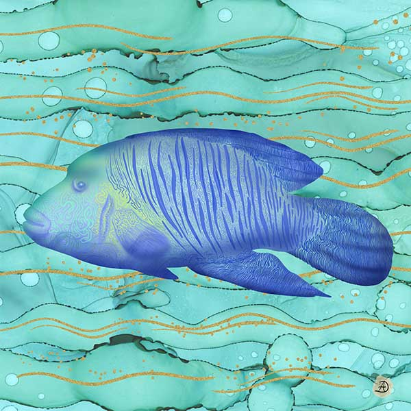 Humphead Wrasse Fish Poster Artwork by Andreea Dumez