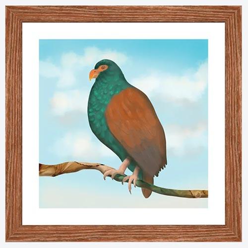 The Little Dodo bird - framed illustration print by Andreea Dumez