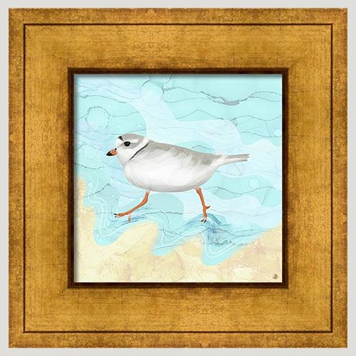 Piping Plover Small Framed Bird Artwork by Andreea Dumez