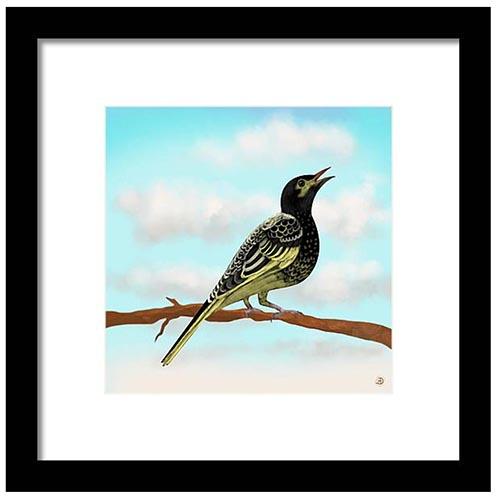 Regent Honeyeater bird art print by Andreea Dumez