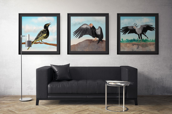 Leather lounge scene with three grouped framed art prints with birds
